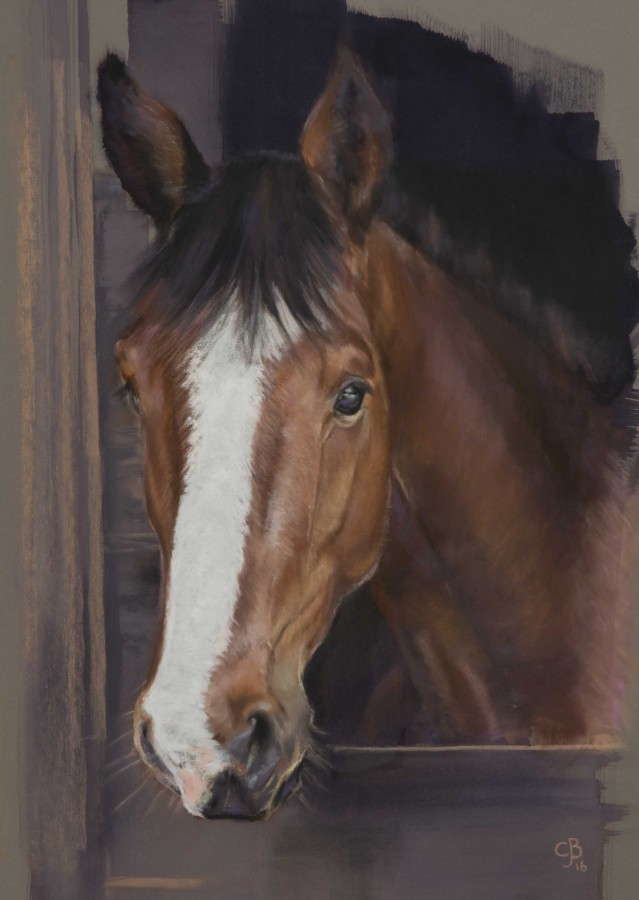 <p><strong><em>Ferdy</em><em> </em></strong>Pastel over acrylic on Pastelmat 40 x 30 cms&nbsp;SOLD</p>